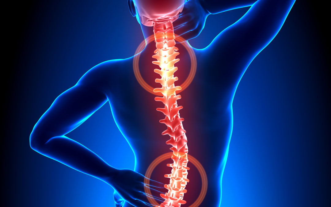 Connecting Our Spine's Health to the Body